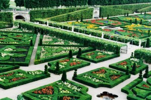 Manicured gardens at Villandry
