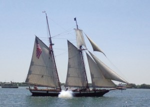 Privateer Lynx takes aim at the writer